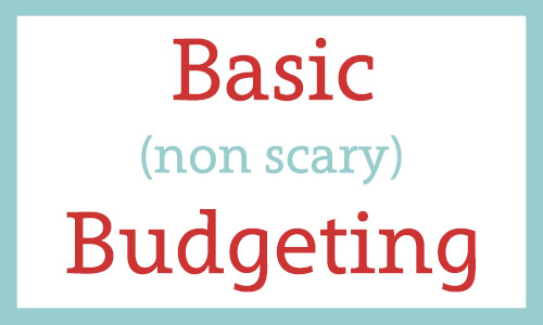 Basic non scary Budgeting