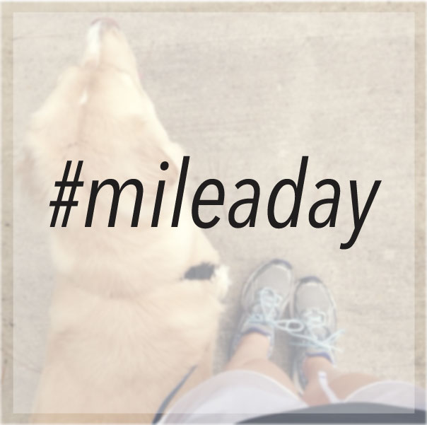 Mile a day