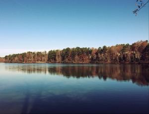 Lake Lynn in Raleigh, NC