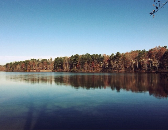 Lake Lynn in Raleigh, NC
