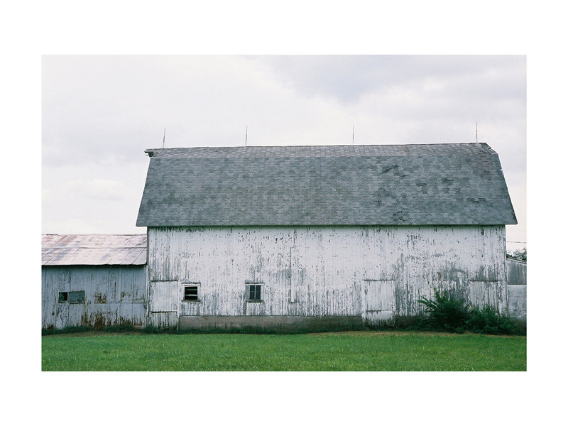 Three Oaks Barn by LeeAnn Dougherty