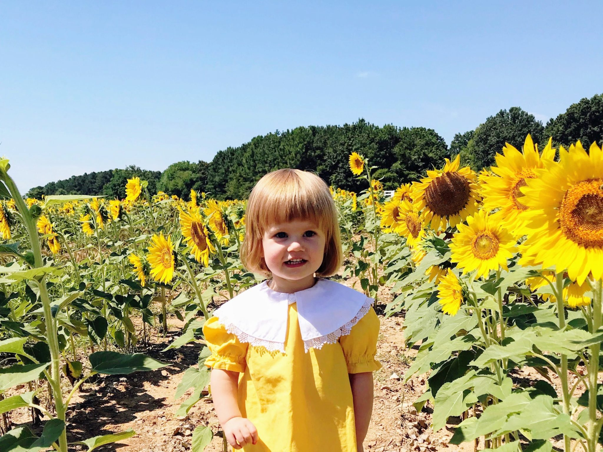 lenora in the sunflowers - august goals
